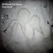 LP image KATE BUSH / 50 WORDS FOR SNOW (2 LP VINYL)