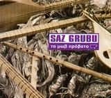SAZ GRUBU / <br>TO MOV PROVATO