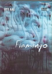 ΠΥΞ ΛΑΞ / <br>FLAMINGO (2 DVD) - (DVD)