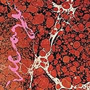 CD image for ICEAGE / BEYONDLESS (VINYL)
