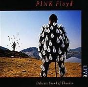 CD Image for PINK FLOYD / DELICATE SOUND OF THUNDER (REMASTERED) (2LP) (VINYL)