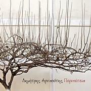 CD image for ΔΗΜΗΤΡΗΣ ΑΡΝΑΟΥΤΗΣ / ΠΕΡΙΠΕΤΕΙΑ