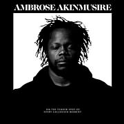 CD image for AMBROSE AKINMUSIRE / ON THE TENDER SPOT OF EVERY CALLOUSED MOMENT