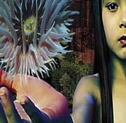 CD image for THE FUTURE SOUND OF LONDON / LIFEFORMS (2LP) (VINYL)