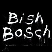 LP image SCOTT WALKER / BISH BOSCH (2 LP) (VINYL)