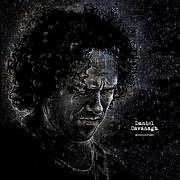 CD Image for DANIEL CAVANAGH / MONOCHROME (2LP) (VINYL)