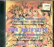 CD image ORTHODOXI EKKLISIASTIKI BYZANTINE HORODIA / THEIA LEITOURGIA
